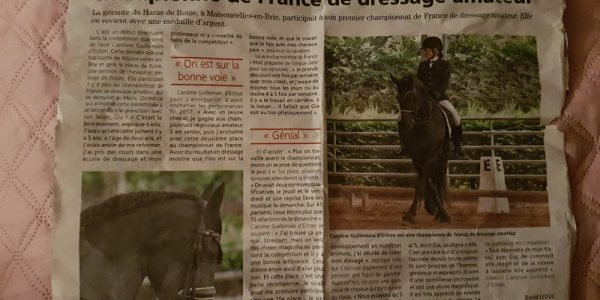 article-pays-briard